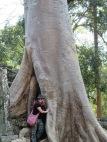 Damn. That's a big tree.