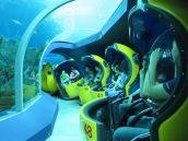 Aquarium ride? Sure!