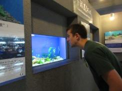 Admiring fish
